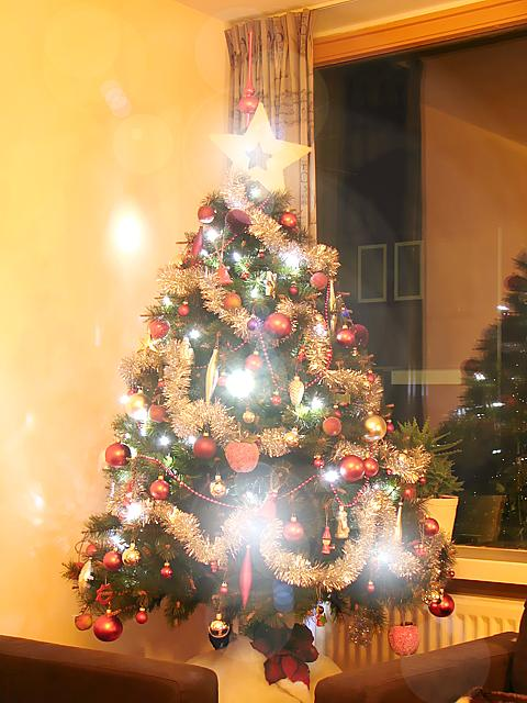 Christmas tree with white LEDs